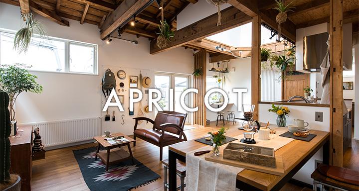札幌市 中古住宅+リノベーション事例 APRICOT